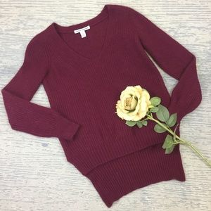 Autumn Cashmere burgundy sweater